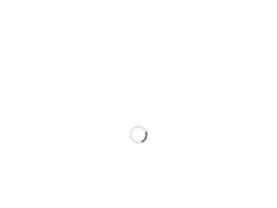 Haarkonzept Ilona Fränzel