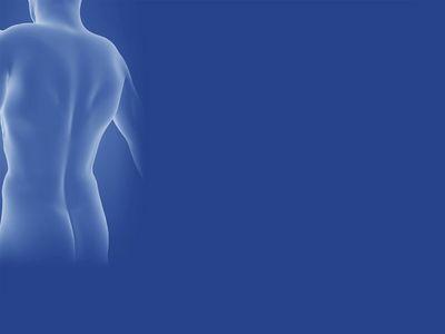 Elena Rassmus Physiotherapie