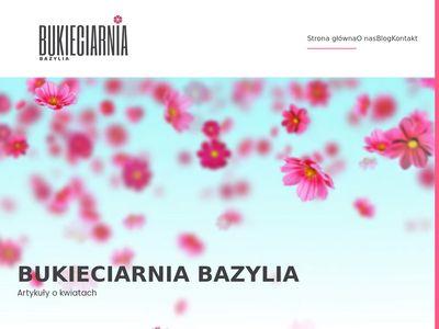 Kwiaciarnia Bazylia Tychy