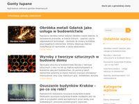 Domy drewniane - ciekawy blog