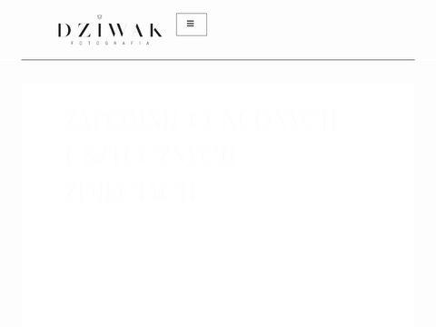 Fotodziwaki.pl - Fotografia 艣lubna Katowice