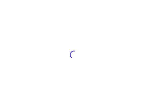 Wkłady kominkowe - omikron-kominki.pl