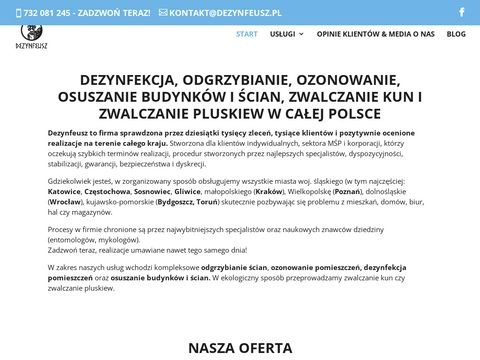 Dezynfeusz.pl