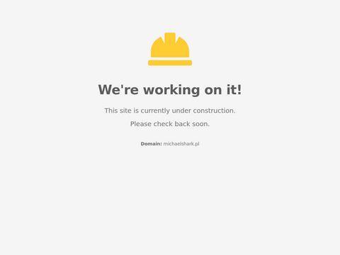 Outsourcing marketingu dla mikro, małych i średnich firm - MichaelShark